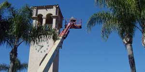 Bee Removal Orange CA Difficult bee removal using a 